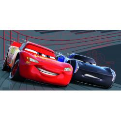 CARS PISTON